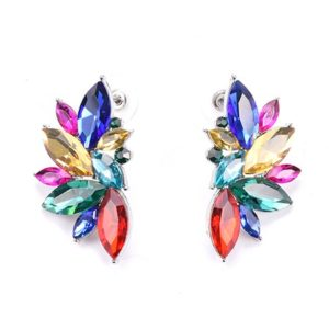 Multicolour Luxury Design Earrings